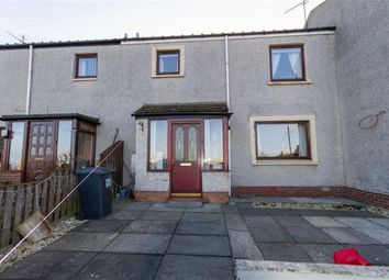 Thumbnail 3 bed terraced house for sale in Eastcliffe, Berwick-Upon-Tweed, Northumberland