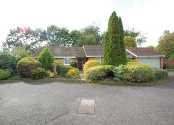 Thumbnail 3 bed bungalow for sale in Long Down, Petersfield