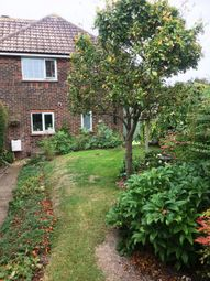 Thumbnail 3 bedroom semi-detached house to rent in Maresfield Rd, Brighton
