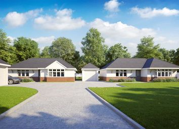 3 bed detached bungalow for sale in Pinehurst Road, West Moors, Ferndown BH22