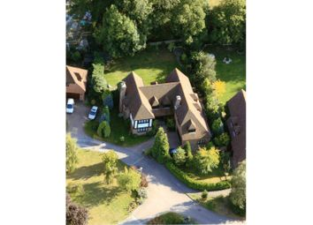 Thumbnail 5 bed detached house for sale in Silver Birches, Small Dole, Henfield