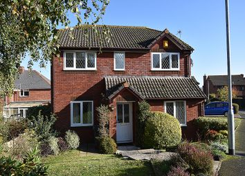 Thumbnail 2 bedroom flat for sale in Walnut Close, Exminster, Near Exeter