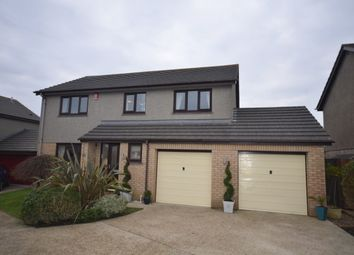 Thumbnail 4 bed detached house for sale in Merritts Way, Pool