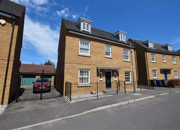 Thumbnail 5 bed detached house to rent in Sachfield Drive, Grays, Essex