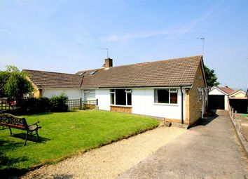 Thumbnail 3 bedroom bungalow for sale in Holly Ridge, Portishead, North Somerset
