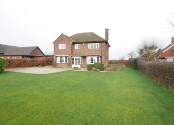Thumbnail 4 bed detached house to rent in Hull Road, Osgodby, Selby