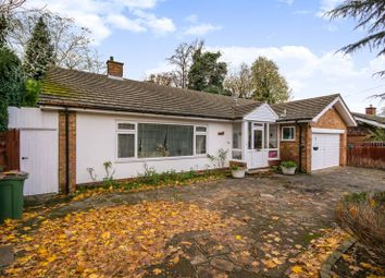 Thumbnail 3 bed bungalow to rent in Northey Avenue, Cheam