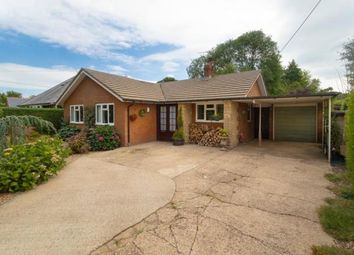 Thumbnail 3 bed detached bungalow to rent in Stelling Minnis, Canterbury
