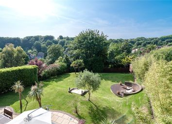 Thumbnail 5 bed detached house to rent in Downside, Hove, East Sussex