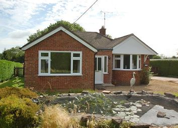 Thumbnail 3 bed detached bungalow for sale in Ellwood Road, Milkwall, Coleford
