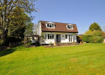 Thumbnail 5 bed detached house for sale in Friary Road, Wraysbury, Berkshire