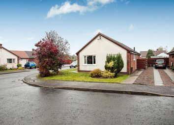 Thumbnail 3 bed bungalow for sale in Fair Gardens, Heathhall, Dumfries
