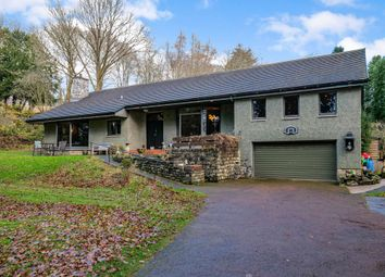 Thumbnail 4 bed detached bungalow for sale in Comrie, Perthshire