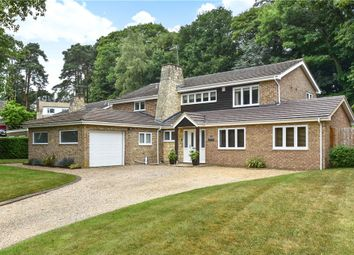 Thumbnail 5 bed detached house for sale in Paddock Close, Camberley, Surrey