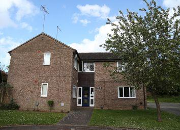 Thumbnail Studio to rent in Manorfield Close, Northampton