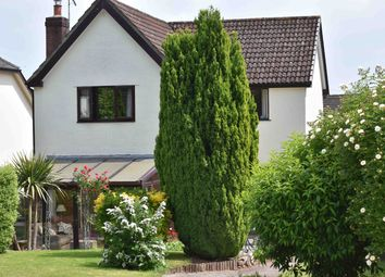 Thumbnail 4 bed detached house for sale in Walnut Gardens, Aylburton, Nr. Lydney