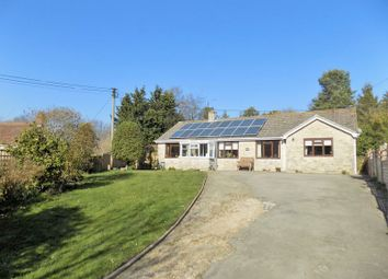Thumbnail 3 bed detached bungalow for sale in Askerswell, Bridport, Dorset