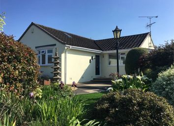Thumbnail 3 bed detached bungalow for sale in Stour View Gardens, Corfe Mullen, Wimborne, Dorset