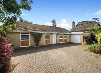Thumbnail 3 bed bungalow for sale in Thornford, Sherborne, Dorset