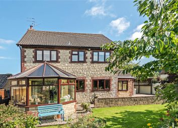 Thumbnail 4 bedroom detached house for sale in Yew Tree Farm, Corscombe, Dorchester