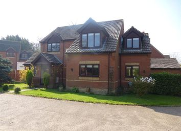 Thumbnail 4 bed detached house to rent in Thrigby Road, Filby, Great Yarmouth