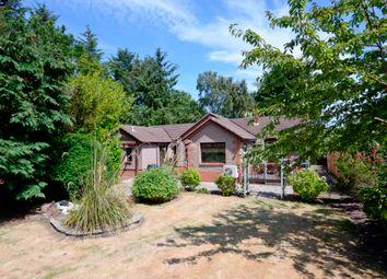 Thumbnail 4 bed detached bungalow for sale in Scoutscroft, Coldingham