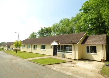Thumbnail 4 bedroom bungalow for sale in Stanton, Bury St. Edmunds, Suffolk