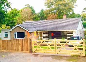 Thumbnail 3 bed detached bungalow to rent in Curzon Way, Highcliffe, Christchurch