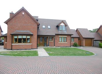Thumbnail 5 bed detached house to rent in Long Drive, Chesterfield