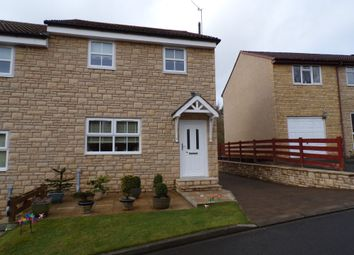 Thumbnail 3 bed semi-detached house for sale in Meadow Grange, Haltwhistle