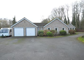 Thumbnail 4 bed bungalow for sale in Pinfold Lane, South Rauceby, Sleaford