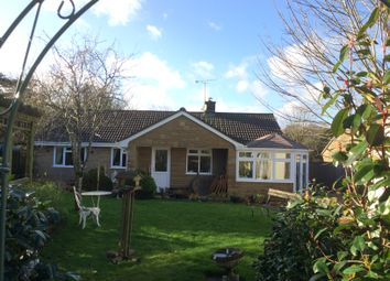 Thumbnail 3 bed detached bungalow for sale in Back Lane North Perrott, Crewkerne