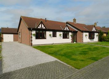 Thumbnail 4 bed detached bungalow for sale in South Park, Roos, Hull