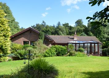Thumbnail 5 bed detached bungalow for sale in Eagle Drive, Longridge, Berwick Upon Tweed, Northumberland