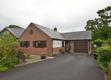 Thumbnail 2 bed detached bungalow for sale in 4, Maes Y Dderwen, Llanbrynmair, Powys