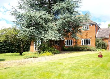 Thumbnail 5 bedroom detached house for sale in Hall Lane, Ipswich