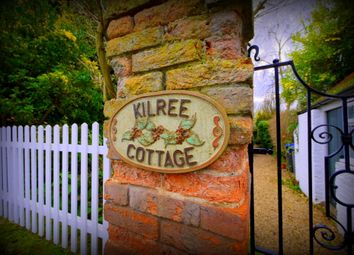 Thumbnail 4 bedroom semi-detached house for sale in Abbey Green, Chertsey