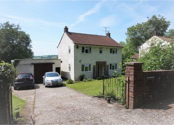 Thumbnail 3 bed detached house for sale in Buckland St. Mary, Chard