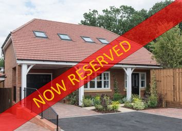 Thumbnail 4 bed detached bungalow for sale in Birch Grove, Potters Bar