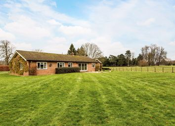 Thumbnail 4 bed bungalow to rent in High Street, Hurley, Maidenhead