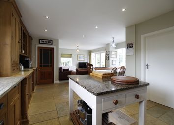 Thumbnail 4 bed bungalow for sale in Derby Road, Mansfield