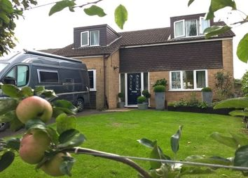 Thumbnail 2 bed bungalow to rent in Fishweir Lane, Bradpole, Bridport