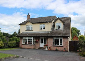 Thumbnail 4 bedroom detached house for sale in Chancellors Rd, Newry