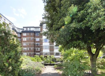 Broomfield Lane, London N13. Studio to rent          Just added