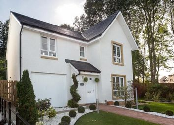 """Thumbnail 4 bedroom detached house for sale in """"Dunbar"""" at Clippens Drive, Edinburgh"""