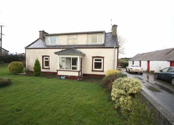 Thumbnail 4 bed detached house for sale in Annadorn Road, Downpatrick, Down