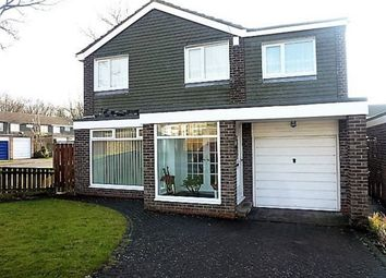 Thumbnail 4 bed detached house for sale in Ashkirk Way, Seaton Delaval, Whitley Bay
