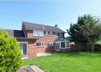 Thumbnail 4 bed property to rent in Rowden Close, West Wellow, Romsey