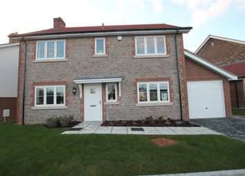 Thumbnail 4 bedroom detached house for sale in Whitebeam House, Ash Green, West Bourton Road, Bourton