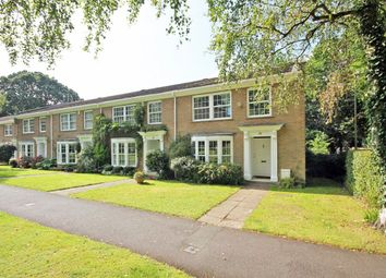 Thumbnail 4 bed property to rent in Halton Close, Bransgore, Christchurch